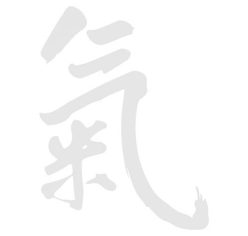 Naturheilpraxis Andrea Bauer Traditionelle Chinesische Medizin